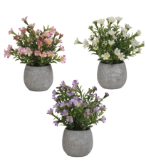 Delicate Flower Pot 3 Assorted