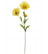 Country Meadow Poppy Yellow